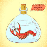 Crayfish in the bottle. Stock Photography