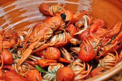 Crayfish in a bowl Royalty Free Stock Images