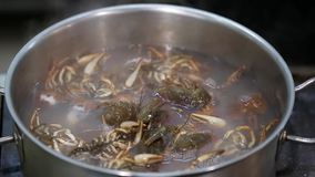 Crayfish cooked in a pan stock video