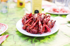 Crayfish plate Stock Images