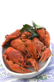 Crayfish crab crawfish red on a platter Stock Images