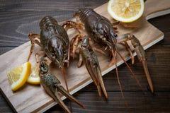 crayfish Czerwoni gotowani crawfishes na stole w wie?niaka stylu, zbli?enie Homara zbli?enie zdjęcie stock