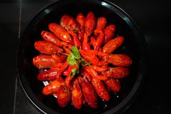 The crayfish is delicious royalty free stock image