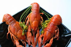 Crayfish and dill. Crayfish laying on black plate Stock Photo