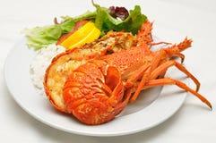 crayfish dish зажжено стоковое изображение