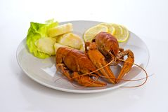 Crayfish dish Royalty Free Stock Images