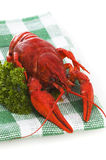 Crayfish food Royalty Free Stock Photo