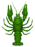 Crayfish (green) Royalty Free Stock Photo