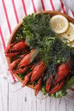 Crayfish with herbs and lemon on a plate closeup. vertical top v Stock Photography