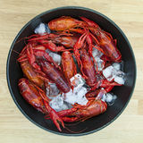 Crayfish on ice. Royalty Free Stock Images