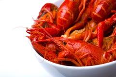 Crayfish In White Bowl Royalty Free Stock Image