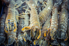 Crayfish Mantis shrimp pile in ice. Fresh seafood market. Stock Photo