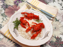 Crayfish meal Royalty Free Stock Images
