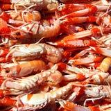 Crayfish Nephrops Norvegicus seafood market Stock Photos