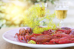 Crayfish party Royalty Free Stock Images
