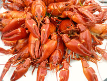 Crayfish party Royalty Free Stock Photography