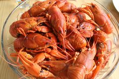 Crayfish for party on laid table stock photography