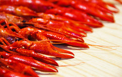 Crayfish pincer Stock Photo