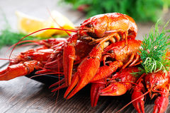 Crayfish. Red boiled crawfish on a wooden table Stock Photography