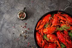 Crayfish. Red boiled crawfishes on table in rustic style, closeup. Lobster closeup. Border design. Top view. Flat lay stock photography