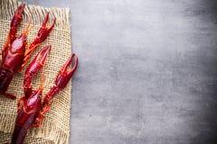 Crayfish. Royalty Free Stock Photo