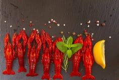 Crayfish Royalty Free Stock Photos
