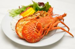 crayfish rozdają target1502_0_ Obraz Stock