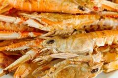 crayfish talerz fotografia stock