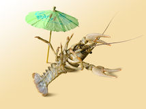 A crayfish is on the vacation. Royalty Free Stock Photo
