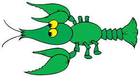 Crayfish (vector clip-art) Royalty Free Stock Photos