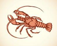Crayfish. Vector drawing Stock Photos