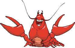 Crayfish Stock Image