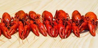 crayfishes Стоковое Изображение