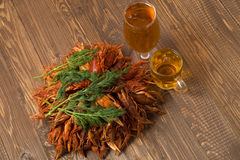 Crayfishes with beer  and dill Stock Photos