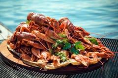 Crayfishes Stock Photo