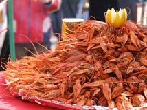 crayfishes gotowani Zdjęcia Royalty Free
