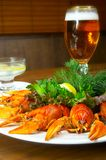 Crayfish with beer on a table.  stock photos