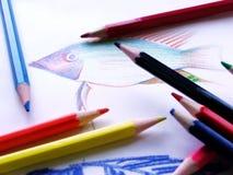Crayon coloré Image libre de droits