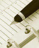 Crayon lecteur sur le cahier (y) Photo stock