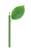 Crayon vert avec la feuille Images stock