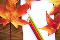 Crayons colorés par école Image stock