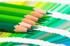 Crayons colorés verts et nuancier Image stock