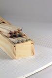 Crayons dans une caisse de stylo Photographie stock libre de droits