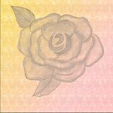 Crayons drawing. Rose embossed on pastel background. Hand drawn Pencil Art. vector illustration