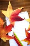 crayons et feuilles d'automne colorés par école Photographie stock libre de droits