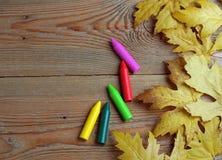 Crayons et feuilles jaunes d'érable Photo libre de droits
