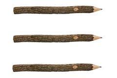 Crayons pour tirer d'un branchement d'arbre séparément Images stock