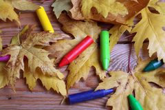 Crayons and yellow leaves Stock Photo