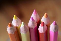 crayonträ Royaltyfri Fotografi