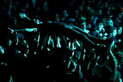 Crazy audience in a concert at Heineken Primavera Sound 2014 Festival Royalty Free Stock Photos